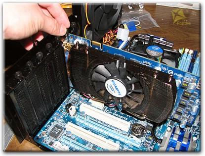 как выглядит видеокарта на компьютере фото