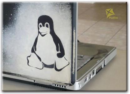 Linux на ноутбук - фото 10